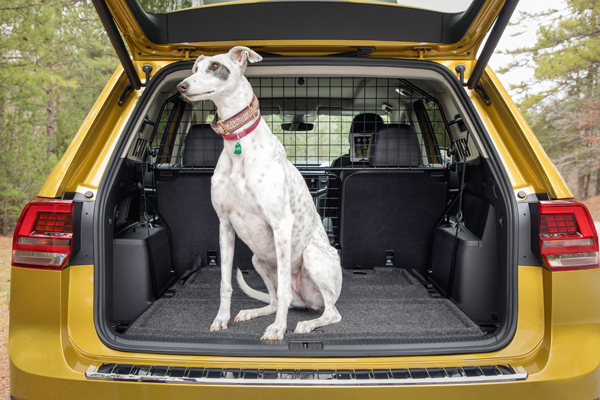 Dog Seat Covers For Cars Big Lots