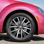 Pink_beetle_gallery_2