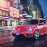 Pink_beetle_gallery_4
